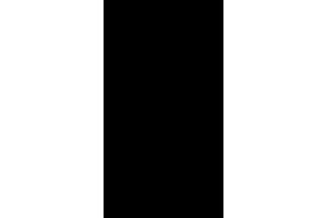patkay logo