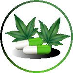 cannabis business name ideas